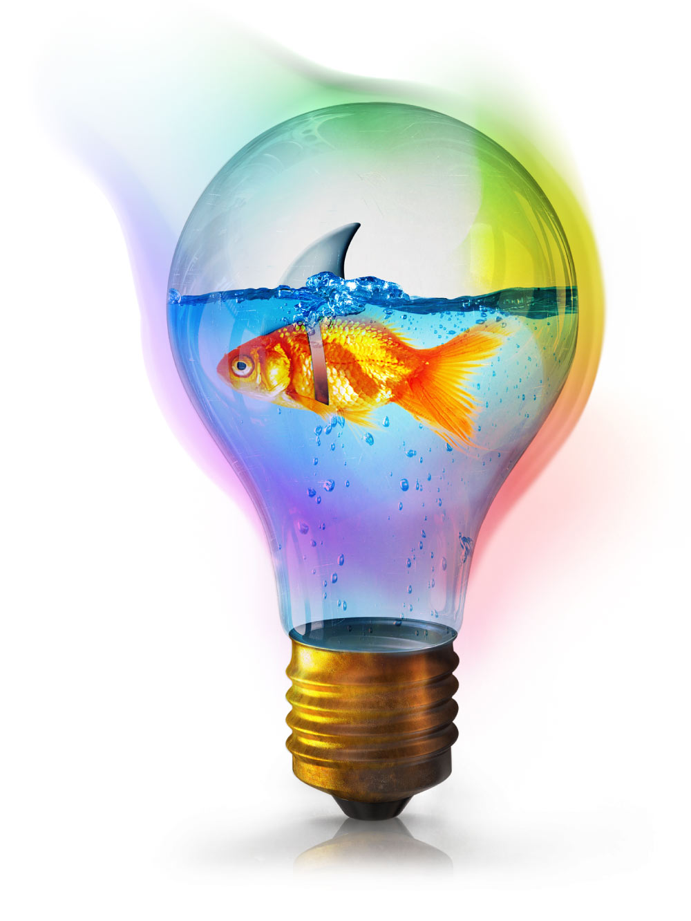 Goldfish in a Lightbulb With a Shark Fin